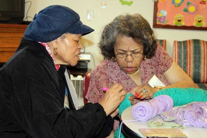 CSHL Knitting 5