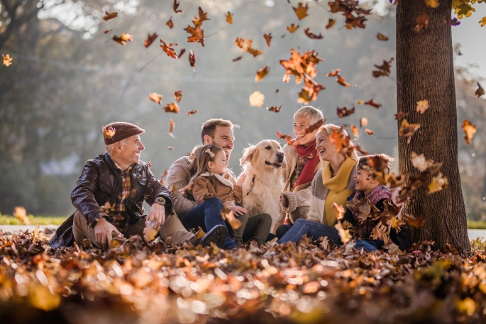 Fall Activities to Enjoy With Seniors - nationalchurchresidences.blog